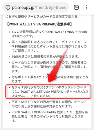 「POINT WALLET VISA PREPAID」の注意事項