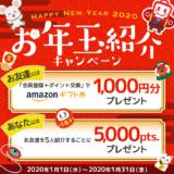 ECナビ「お年玉紹介キャンペーン」(2020年1月)